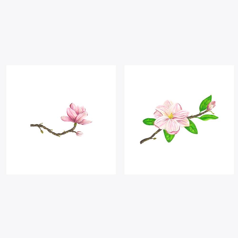 2'li Pembe Manolya Çiçeği | Fine Art Print