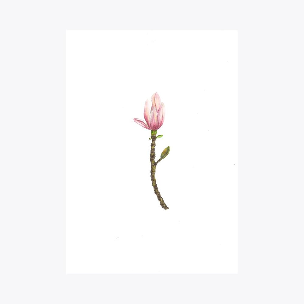Manolya Gonca | Fine Art Print