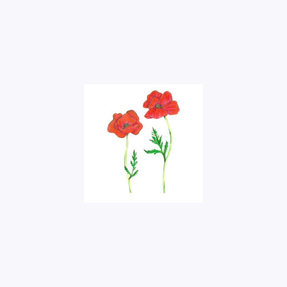 Gelincik Çiçeği İkili | Print