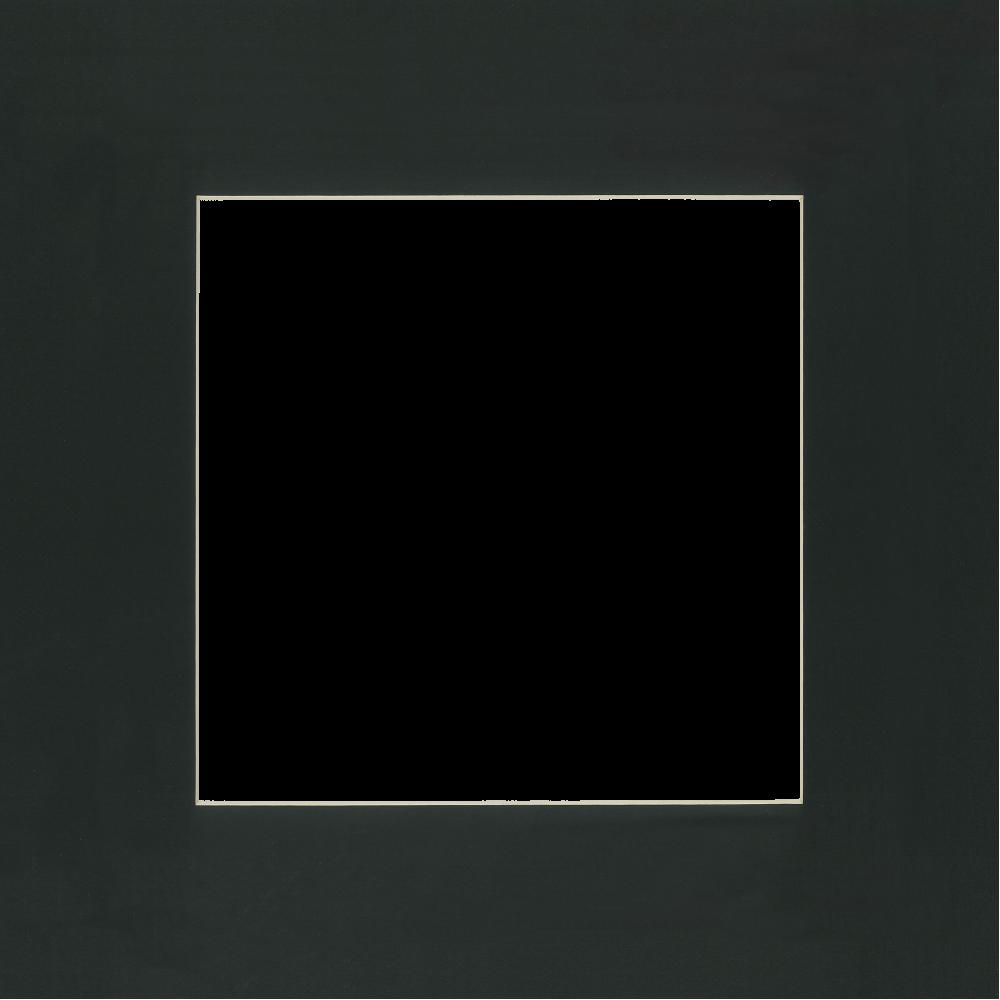 Siyah Paspartu